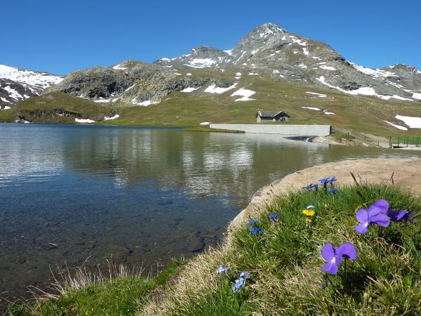 Meilleures Locations de vacances Val d Aoste - TripAdvisor - Gites